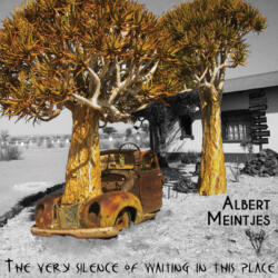 Albert Meintjes - The very silence of waiting in this place